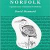 Broader Norfolk
